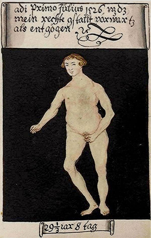 Matthäus Schwarz Aged 29 1/3, 8 days - On 1st July 1526 that was my real naked figure - Bibliothèque Nationale, Paris