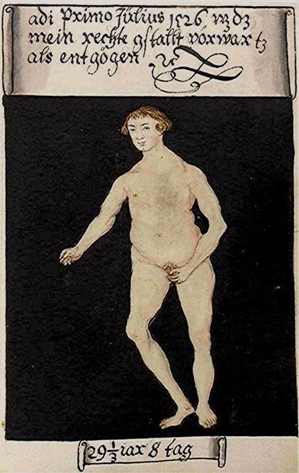 Matthäus Schwarz Aged 29 1/3, 8 days - On 1st July 1526 that was my real naked figure - Bibliothèque Nationale, Paris